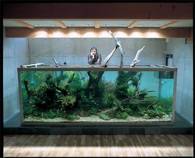 Biotope Aquariums