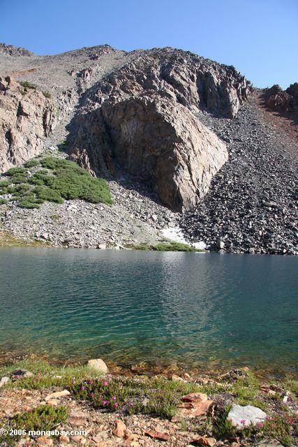 bergona озеро