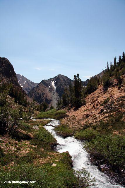 Stream flowing out of Par Value Lake into Green creek canyon