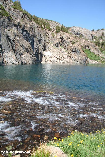 Бирюзовая вода номинальной стоимости озеро