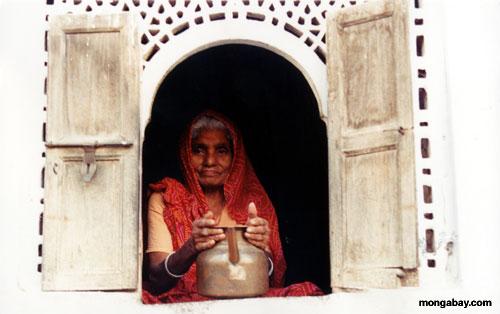インドの女性は、インド