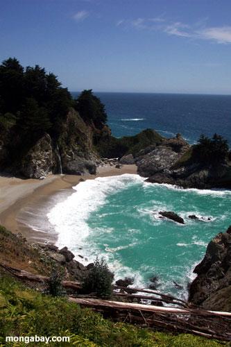 Photos Big Surf California