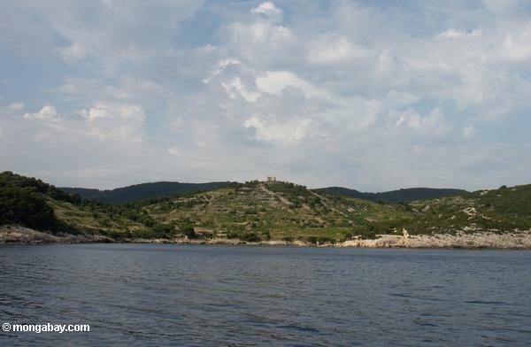 Schloß ruiniert nahe Viška luka