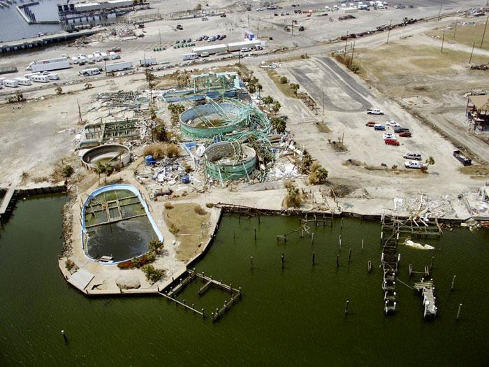 Life After Katrina