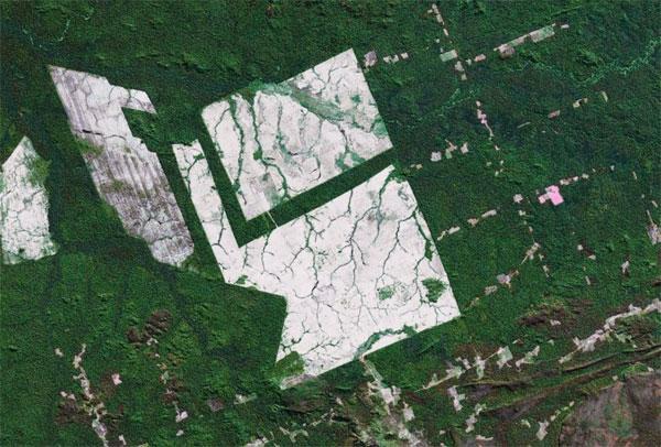 NASA image showing large-scale deforestation in the Brazilian Amazon.