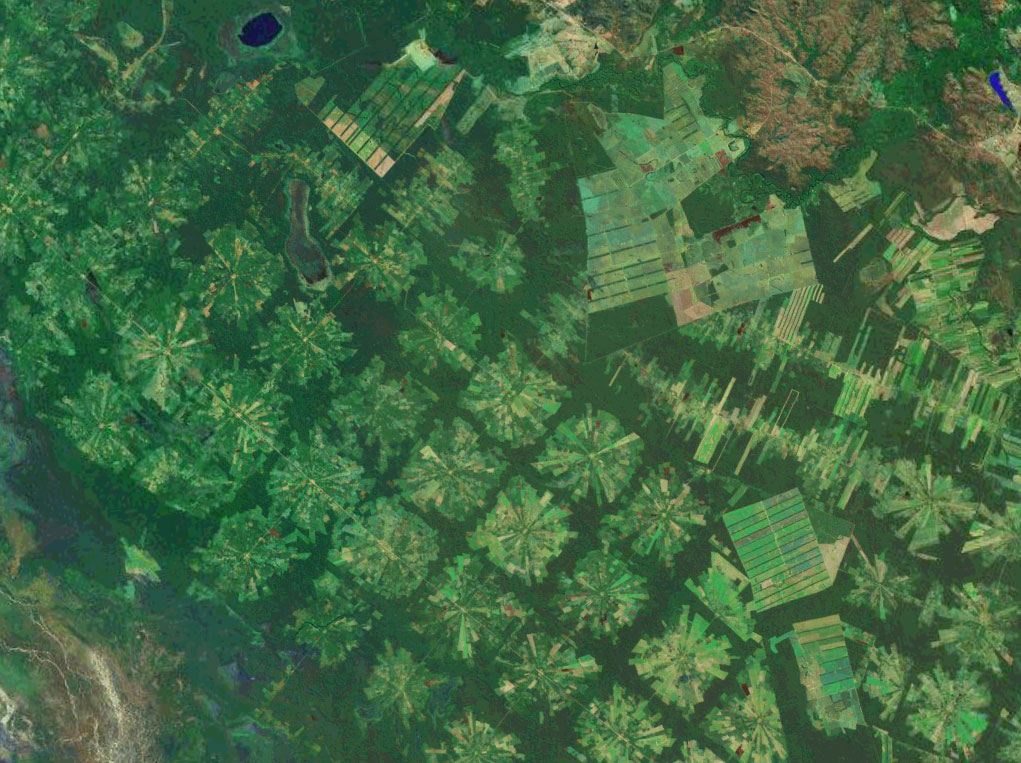 Satellite image showing agricultural plots in Brazil and forest remaining in between them.