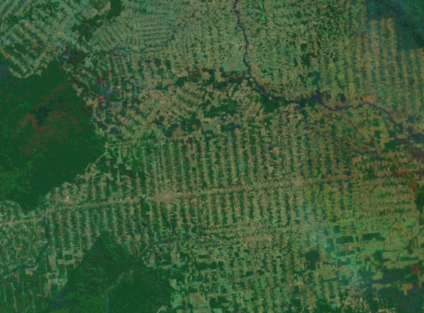 Landsat image showing deforestation in the Brazilian Amazon
