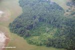 Aerial view of invasive logging in Gabon