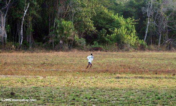 Gabonese Fußballspieler, der zur Praxis im Regenwald Loango