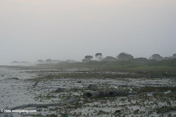 Hazy beach in Gabon