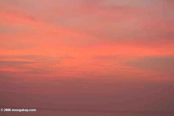 898ca611cc0ef Foto  Por do sol cor-de-rosa