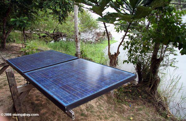 Painéis solares na selva