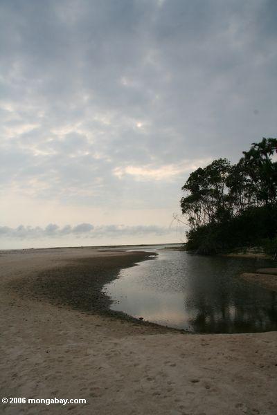 Lagoa na praia perto de St. Catherine do ponto
