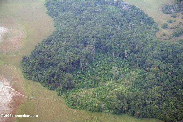 Vista aérea de Gabon entrando invasive