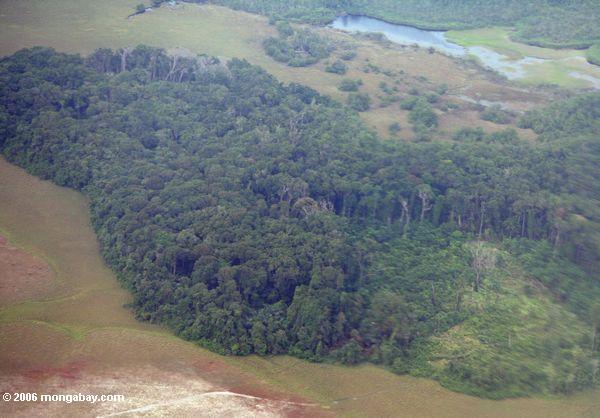 Vista do avião de entrar Gabon