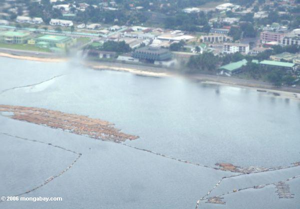 Rainforest logs floating offshore in Gabon