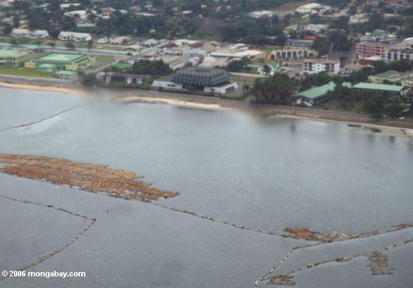 Logs floating offshore before processing in Gabon