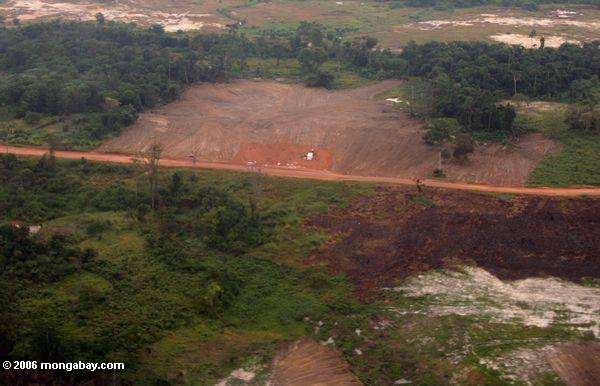 Forest degradation near a road in Gabon
