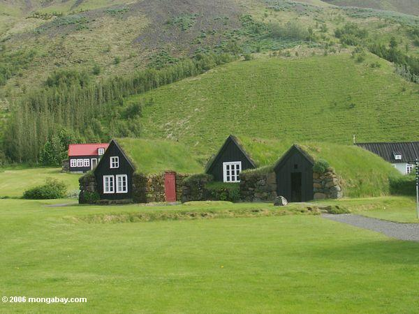 Rasenhäuser bei Skogar in Island