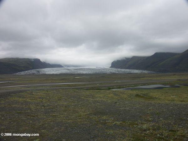 Skaftafell Zunge des Vatnajokull Gletschers