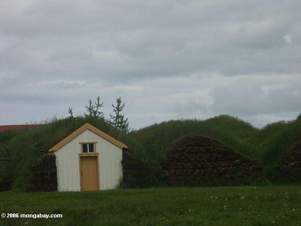 Häuser konstruiert aus Rasen bei Glaumbaer