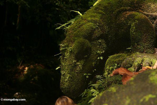 Moosige Monitoreidechsestatue im Affe-Wald