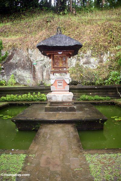 Hof der Elefant-Höhle (Goa Gajah), grüne Lache