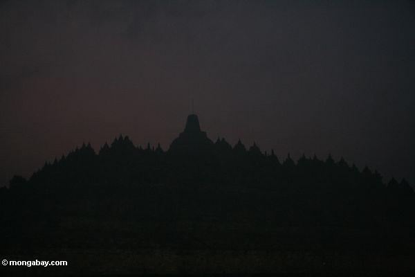 Schattenbild von Boboudur am frühen Morgen