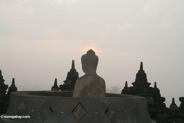 Profil von Dhyani Buddha am Sonnenaufgang
