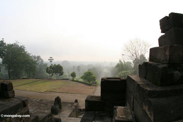 Morgen am Borobudur Bügel