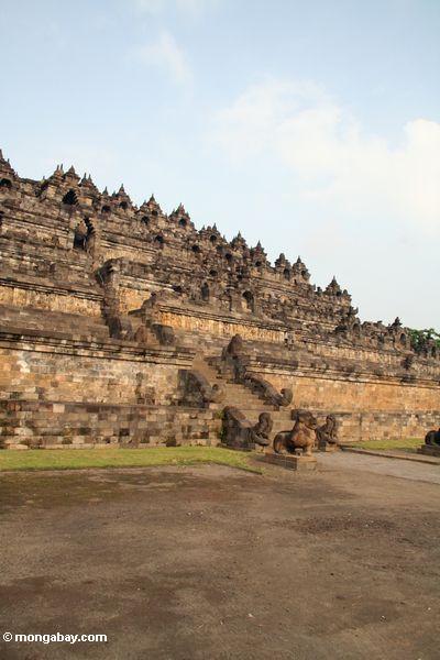 Borobudur Bügel