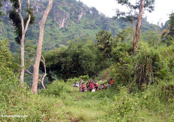 Lokale Männer, die von einem Tag des Arbeitens im Wald Java