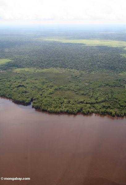 Luftaufnahme der südlichen Küste von Borneo