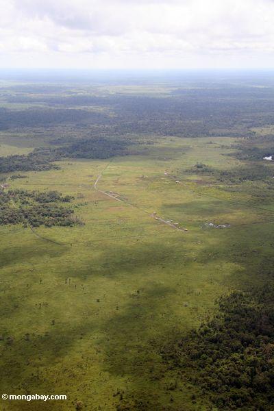 Flugzeugansicht der entwaldeten Bereiche in Borneo