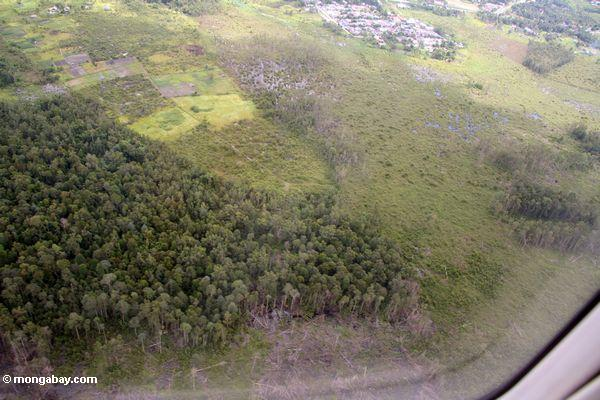 Ansicht vom Flugzeug der Waldreinigung um Pangkalanbun