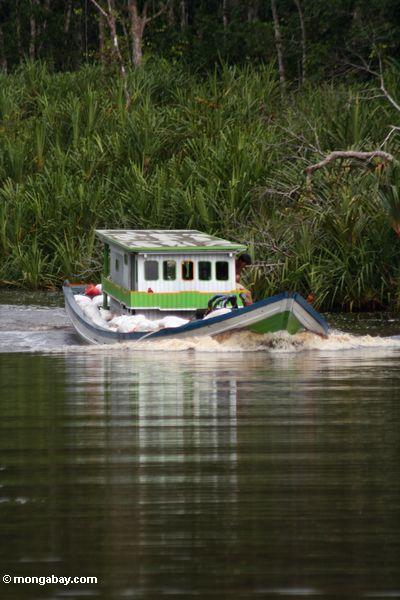 Boot tragende Beutel des Silikons für den Export extrahiert von Borneo rainforest nach China
