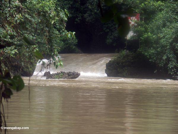 Schwimmenbohrung und kleine Fälle auf Bantimurung Fluß