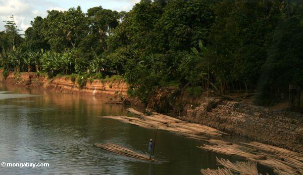 Sich hin- und herbewegende Bambuspfosten für Aufbau
