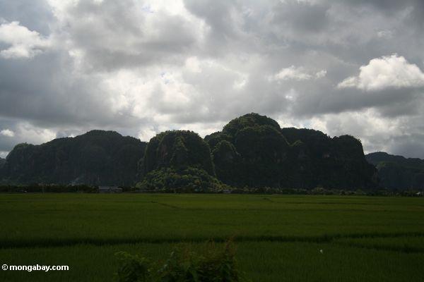 Sulawesi Kalksteinberge außerhalb Makassar