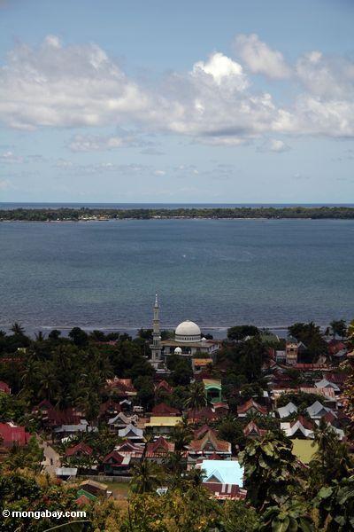 Moschee in der Küste schneiden schneiden in Sulawesi