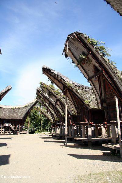 Palawa Dorf