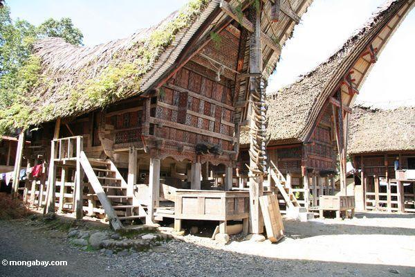 Palawa Dorf bringt