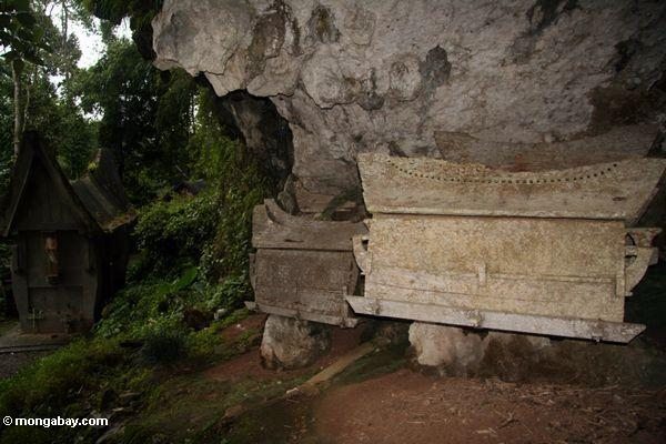 каменные гробы на ketu kese