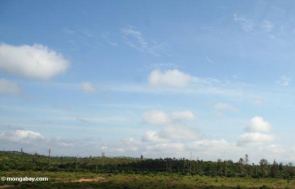 Wald Malaysia