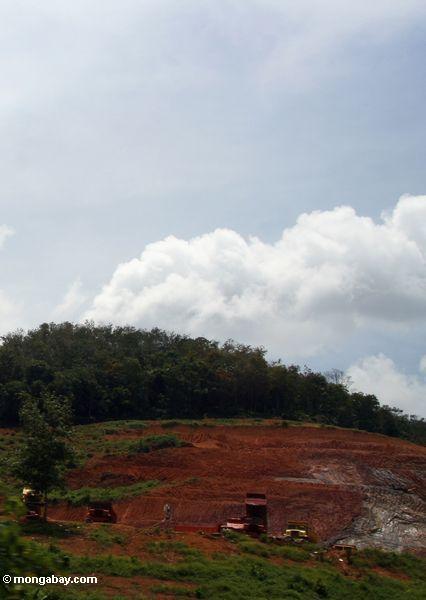добычи полезных ископаемых в малайзийских тропических лесов