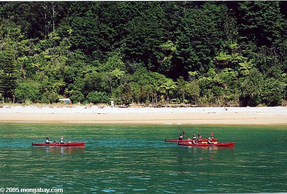 New Zealand, New Zealand