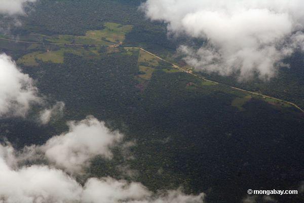 аэрофотоснимков обезлесения вдоль дороги в бассейне реки Амазонки