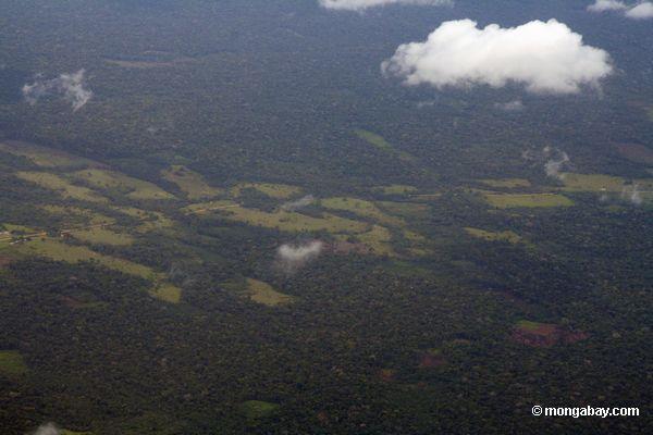 аэрофотоснимков обезлесения в бассейне реки Амазонки