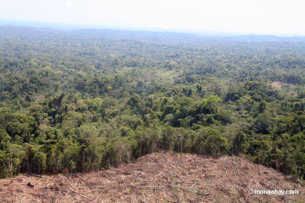 Mina de ouro de Rio Huaypetue e deforestation associado como visto de um avião