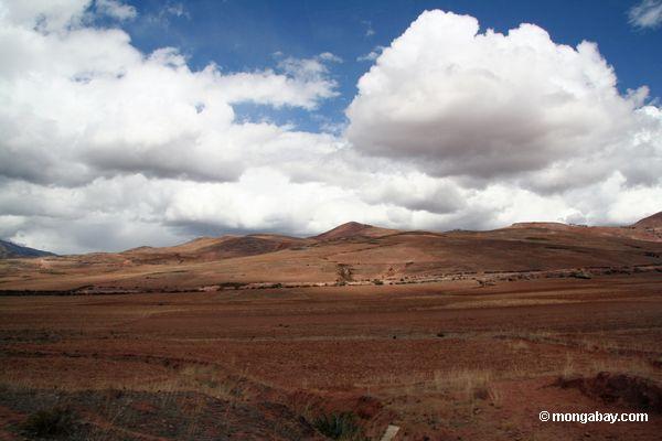 Terra Andean